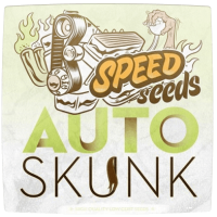 Сорт марихуани Auto Skunk Feminised