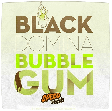 Black domina bubble Gum